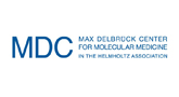 Max Delbrück Center for Molecular Medicine in the Helmholtz Association (MDC)