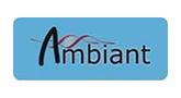 Ambiant (U Antwerpen Alumni network)