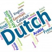Life as an expat in the Netherlands